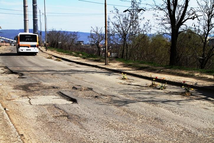 gropi asfalt bacau